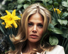 This is an image of Prints & Posters of Britt Ekland 203342
