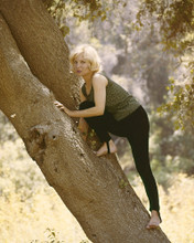 This is an image of Prints & Posters of Susan Oliver 203590