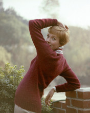 This is an image of Prints & Posters of Julie Andrews 203610