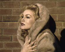 This is an image of Prints & Posters of Julie Newmar 203611