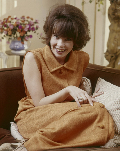 This is an image of Prints & Posters of Leslie Caron 203615