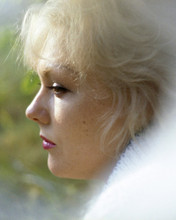 This is an image of Prints & Posters of Kim Novak 203618