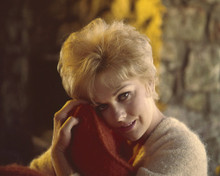 This is an image of Prints & Posters of Kim Novak 203619