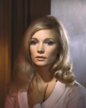 This is an image of Prints & Posters of Yvette Mimieux 203499