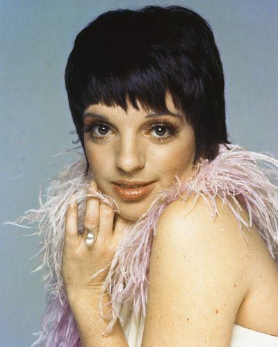 This is an image of Prints & Posters of Liza Minnelli 203511