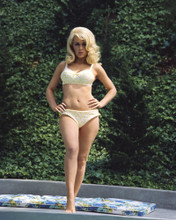 This is an image of Prints & Posters of Stella Stevens 203554