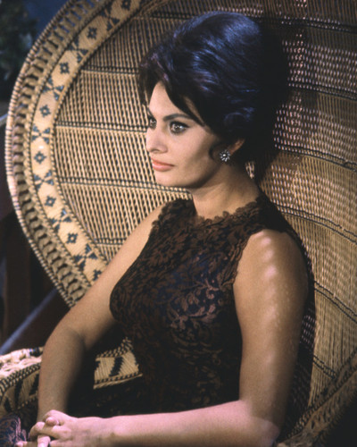 This is an image of Prints & Posters of Sophia Loren 203473