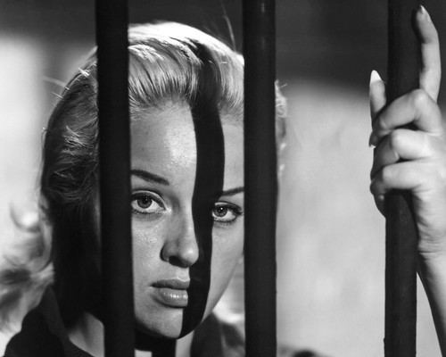 This is an image of Prints & Posters of Diana Dors 106052