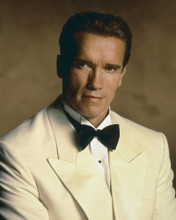 This is an image of Prints & Posters of Arnold Schwarzenegger 203347
