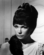 This is an image of Prints & Posters of Shirley Maclaine 106349