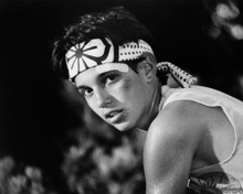 This is an image of Prints & Posters of Ralph Macchio 106365