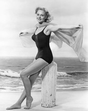 This is an image of Prints & Posters of Diane McBain 106202
