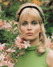 This is an image of Prints & Posters of Alexandra Bastedo 203663