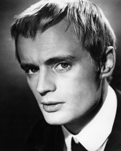 This is an image of Prints & Posters of David McCallum 106239