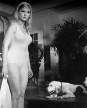 This is an image of Prints & Posters of Yvette Mimieux 106256