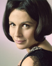 This is an image of Prints & Posters of Claire Bloom 203789