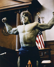 This is an image of Prints & Posters of The Incredible Hulk 203886