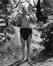 This is an image of Prints & Posters of Johnny Weissmuller 106396