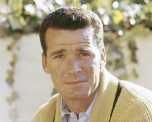 This is an image of Prints & Posters of James Garner 203806