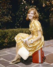 This is an image of Prints & Posters of Hayley Mills 203865