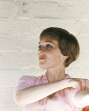 This is an image of Prints & Posters of Julie Andrews 203893