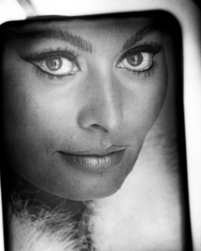 This is an image of Prints & Posters of Sophia Loren 106381