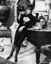 This is an image of Prints & Posters of Valerie Perrine 106739