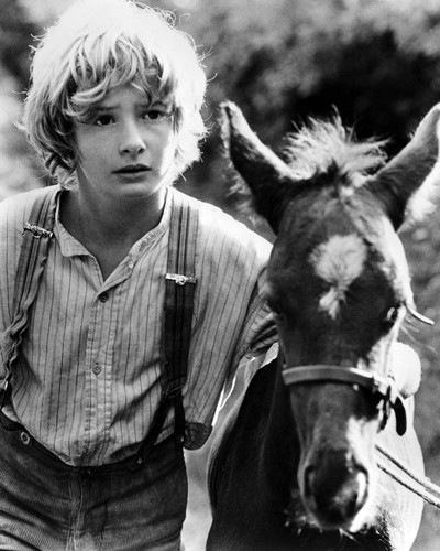 This is an image of Prints & Posters of Mark Lester 106433