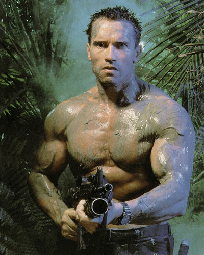 This is an image of Prints & Posters of Arnold Schwarzenegger 203752