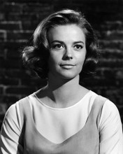 This is an image of Prints & Posters of Natalie Wood 106452