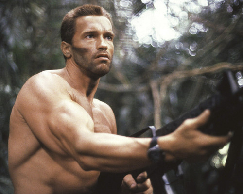 This is an image of Prints & Posters of Arnold Schwarzenegger 203767