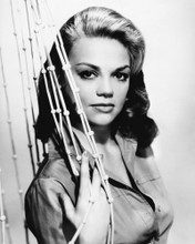 This is an image of Prints & Posters of Dyan Cannon 106460