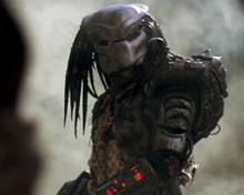 This is an image of Prints & Posters of Predator 203820