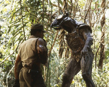This is an image of Prints & Posters of Predator 203821