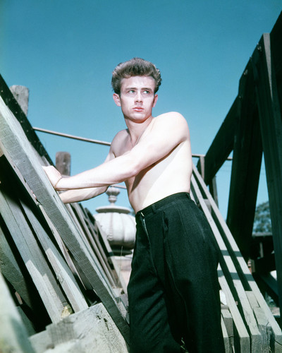 This is an image of Prints & Posters of James Dean 203985
