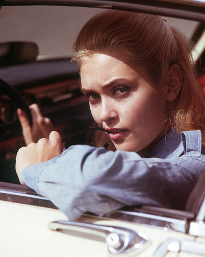 This is an image of Prints & Posters of Alexandra Bastedo 203974