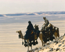 This is an image of Prints & Posters of Lawrence of Arabia 203992
