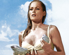 This is an image of Prints & Posters of Ursula Andress 204002