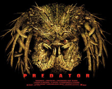 This is an image of Prints & Posters of Predator 204239