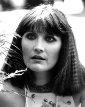 This is an image of Prints & Posters of Sandie Shaw 106973