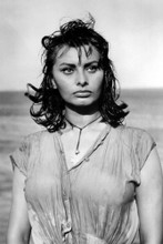 This is an image of Prints & Posters of Sophia Loren 106961