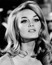 This is an image of Prints & Posters of Barbara Bouchet 106934