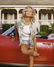 This is an image of Prints & Posters of Farrah Fawcett 204215