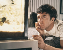 This is an image of Prints & Posters of The Graduate 204285
