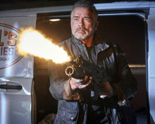 This is an image of Prints & Posters of Arnold Schwarzenegger 204301