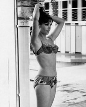 This is an image of Prints & Posters of Claudine Auger 107171