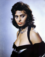 This is an image of Prints & Posters of Sophia Loren 204320