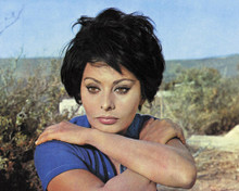 This is an image of Prints & Posters of Sophia Loren 204327
