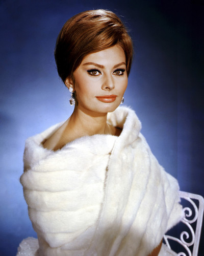 This is an image of Prints & Posters of Sophia Loren 204341