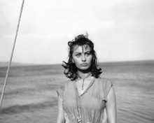 This is an image of Prints & Posters of Sophia Loren 107087